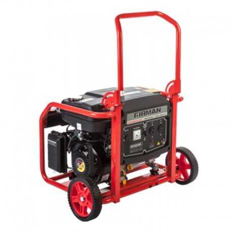 موتور برق فیرمن 2.2 کیلو وات مدل ECO2990