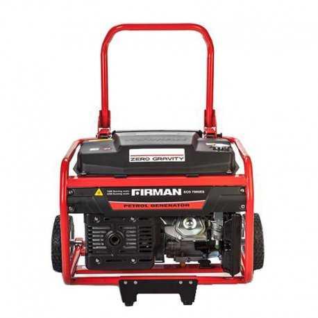 موتور برق فیرمن 5.5 کیلو وات مدل ECO 7990E